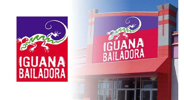Iguana Bailadora Corporate Identity